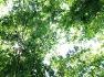의령 가볼만한 곳-아무리 걸어도 지치지 않을 넉넉한 초록의 길-의령 신포리
