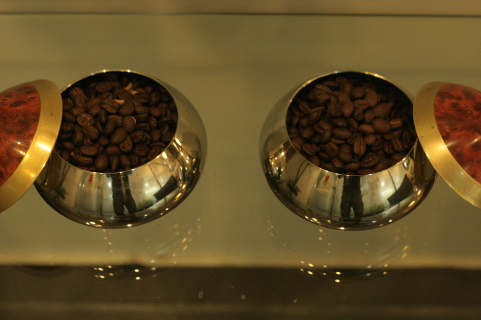 커피콩의 모습