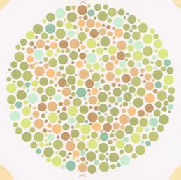 색약검사테스트(신체검사)